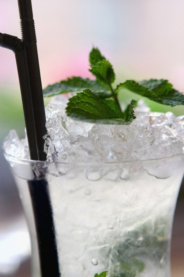 Free Mojito Cocktail Royalty Free Stock Photo - 5511045