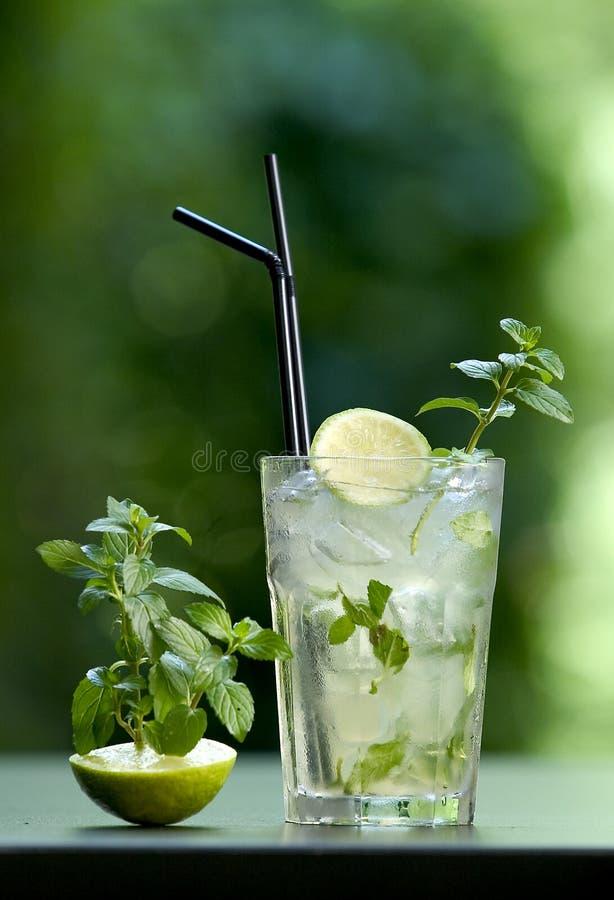 mojito de cocktail image stock