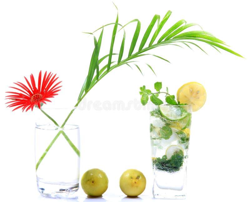 Download Mojito drink stock image. Image of lemon, background - 20594203