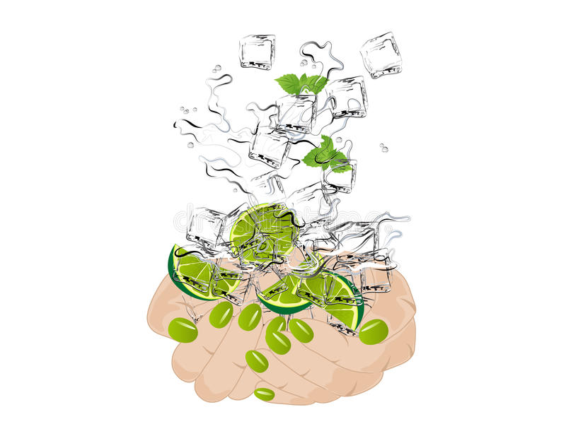 Download Mojito in hands stock vector. Image of lady, citrus, finger - 25102275