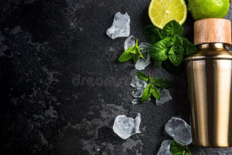 Mojito ingredienser gränsar bakgrund royaltyfria bilder