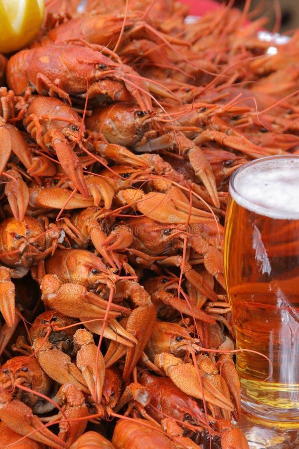 Mok van bier en rivierkreeften stock afbeelding