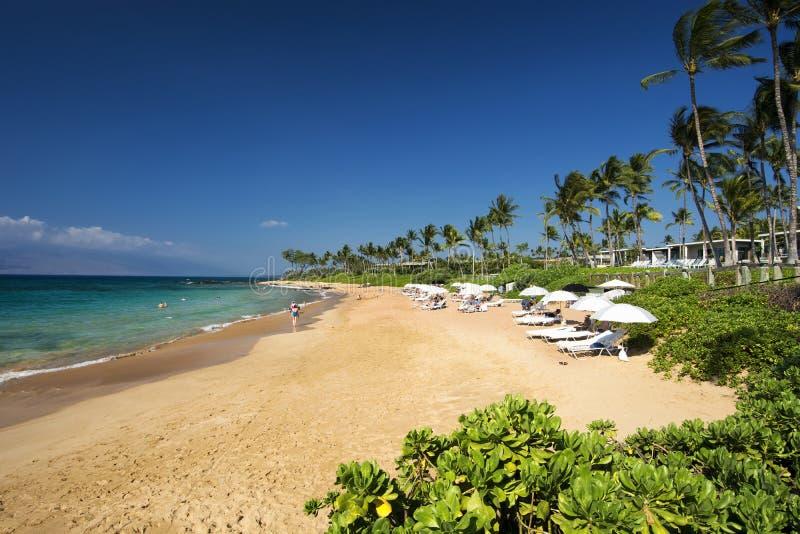 Mokapu Wyrzucać na brzeg, południowy brzeg Maui, Hawaje fotografia royalty free