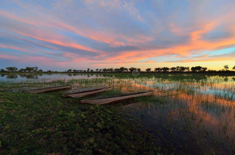 Mokoro no delta de Okavango no por do sol, Botswana imagens de stock