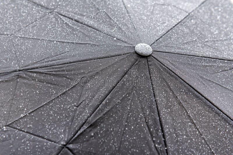 Mokra parasolowa tekstura zdjęcie royalty free