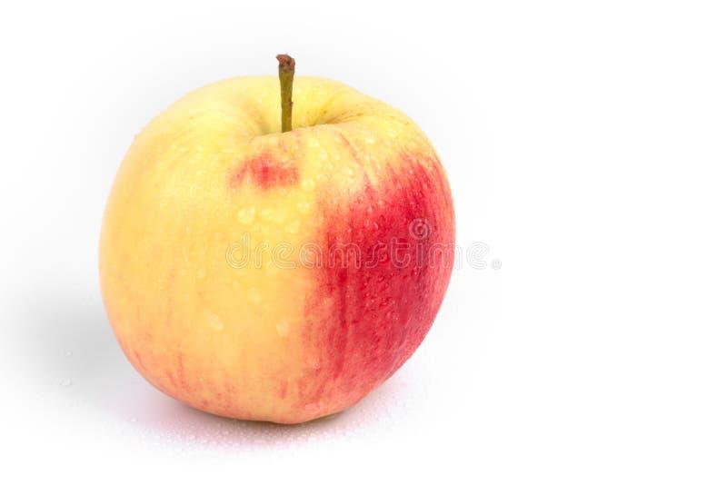 Mokre jabłko rozlane małymi kroplami wody stojącymi pojedynczo na białym tle zdjęcie stock