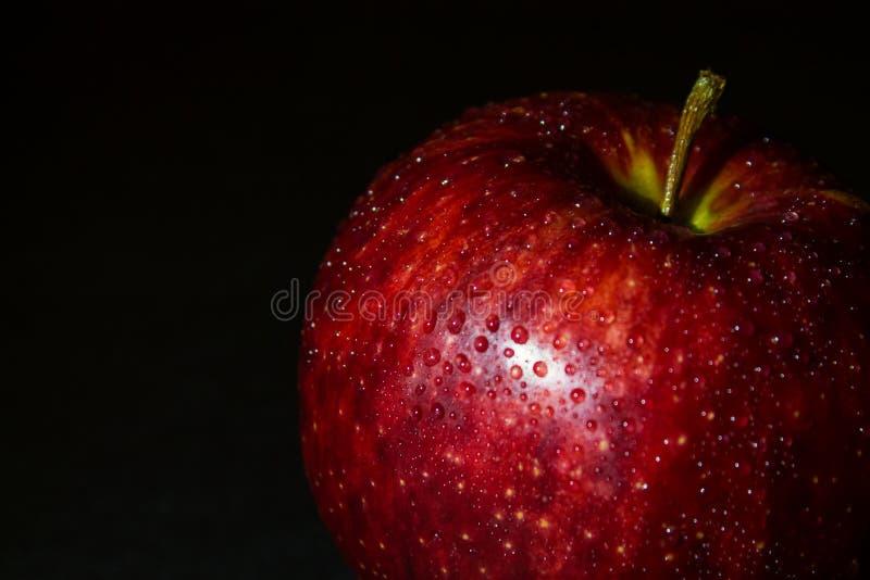 Mokry czerwony jabłko w kroplach woda na czerni obraz royalty free