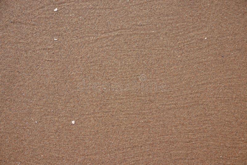 Mokry piasek plaży tło zdjęcia stock