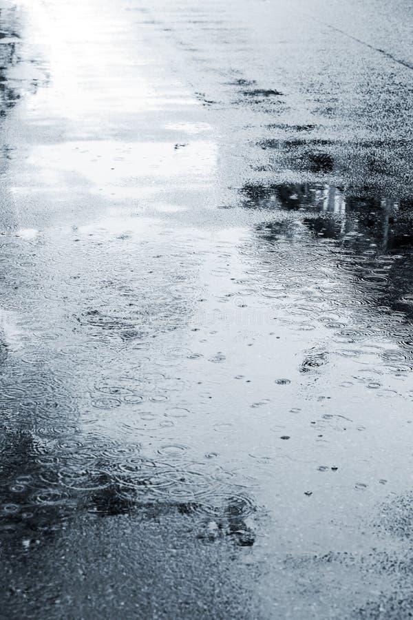 Mokry uliczny bruk podczas deszczu w jesień sezonie zdjęcia stock