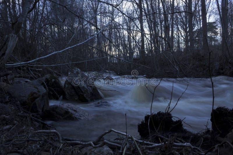 Mokrzy kamienie w przedpolu, wiosny zazwyczaj mała rzeka w lesie w północnym Szwecja powódź zdjęcie royalty free