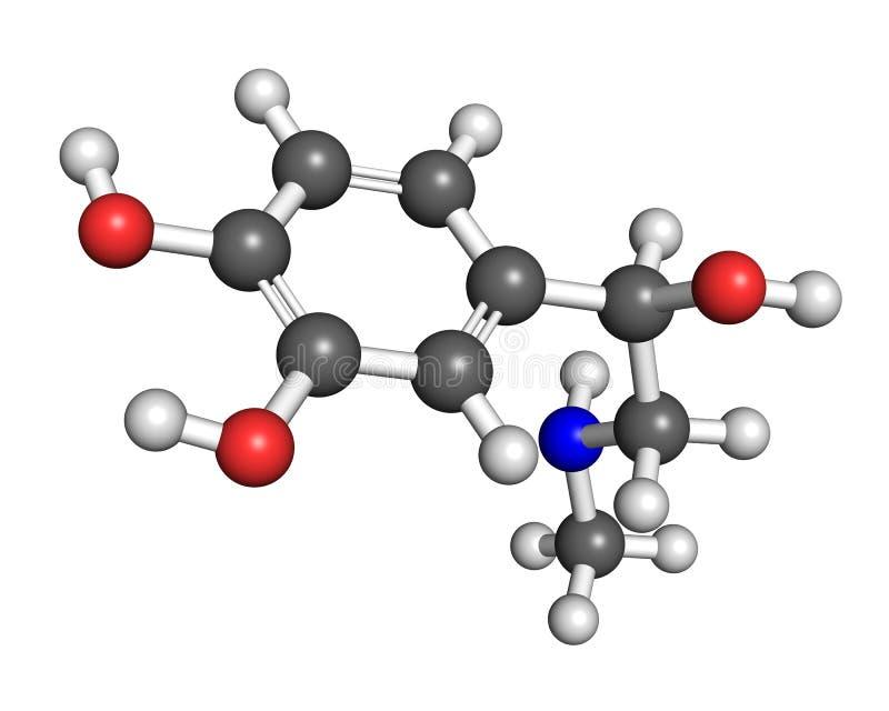 Molécula da adrenalina ilustração do vetor