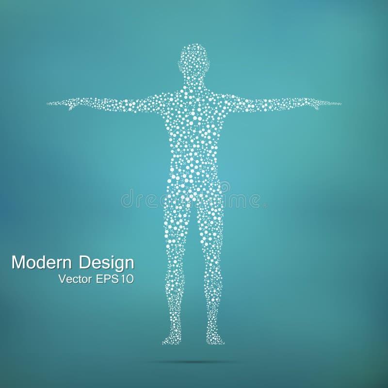 Molécula da estrutura do homem ADN do corpo humano de modelo abstrato Medicina, ciência e tecnologia Vetor científico para o seu ilustração royalty free