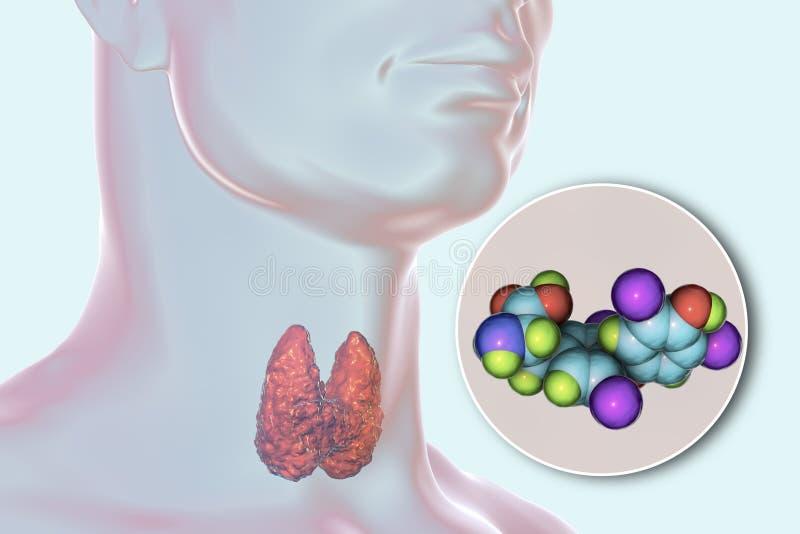 Molécula da hormona de tiroide T4 ilustração royalty free