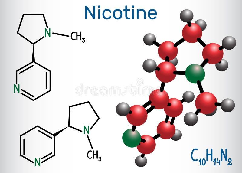 A molécula da nicotina, é alcaloide, encontrou na família do nightshade ilustração royalty free