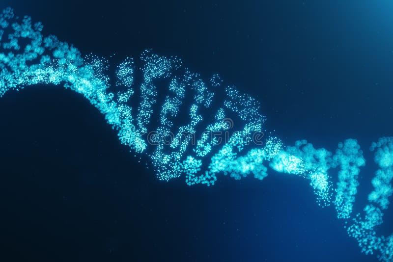 Molécula de la DNA de Digitaces, estructura Genoma humano del código digital del concepto Molécula de la DNA con los genes modifi libre illustration