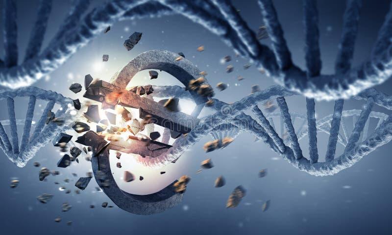 Molécula de la DNA y muestra del euro fotos de archivo