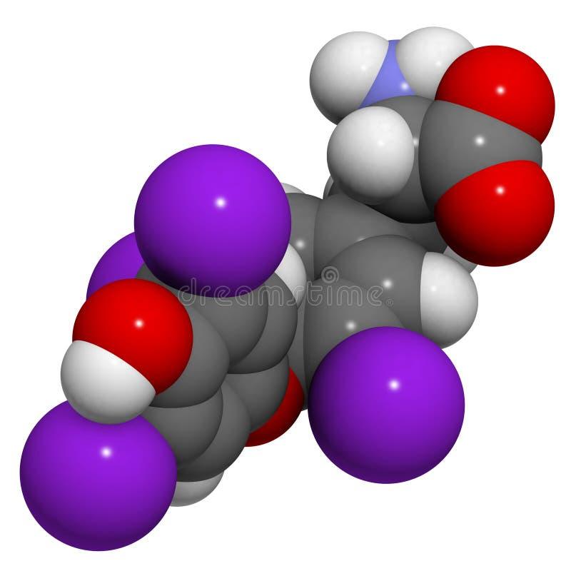 Molécula de la hormona de la tiroxina, estructura química. ilustración del vector