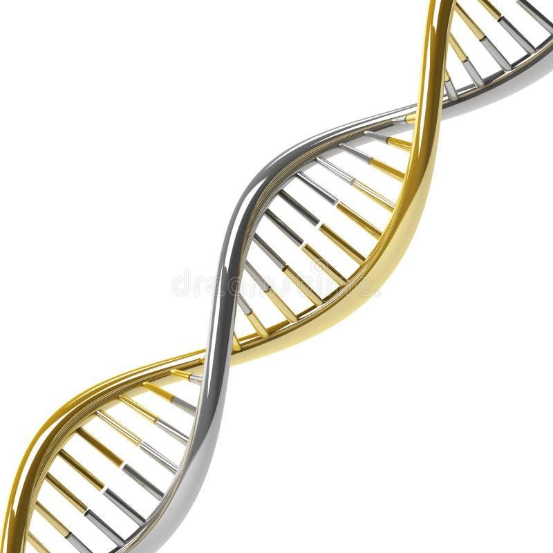 Molécula do ADN ilustração do vetor