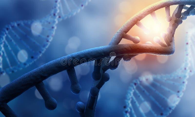 Molécula do ADN fotografia de stock royalty free