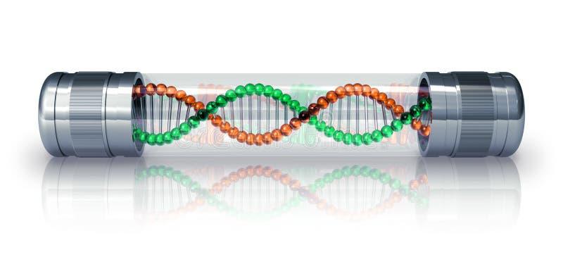 Molécula do ADN na cápsula hermetic ilustração royalty free