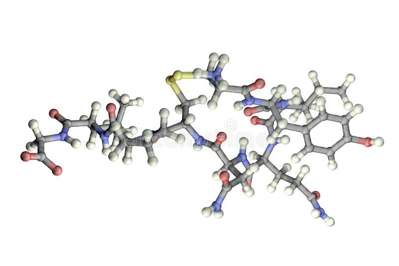 Molécula do oxytocin, uma hormona liberada do neurohypophysis ilustração royalty free