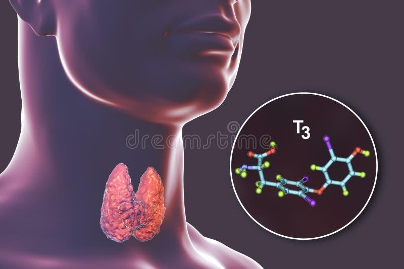 Molécula do T3 da hormona de tiroide ilustração royalty free