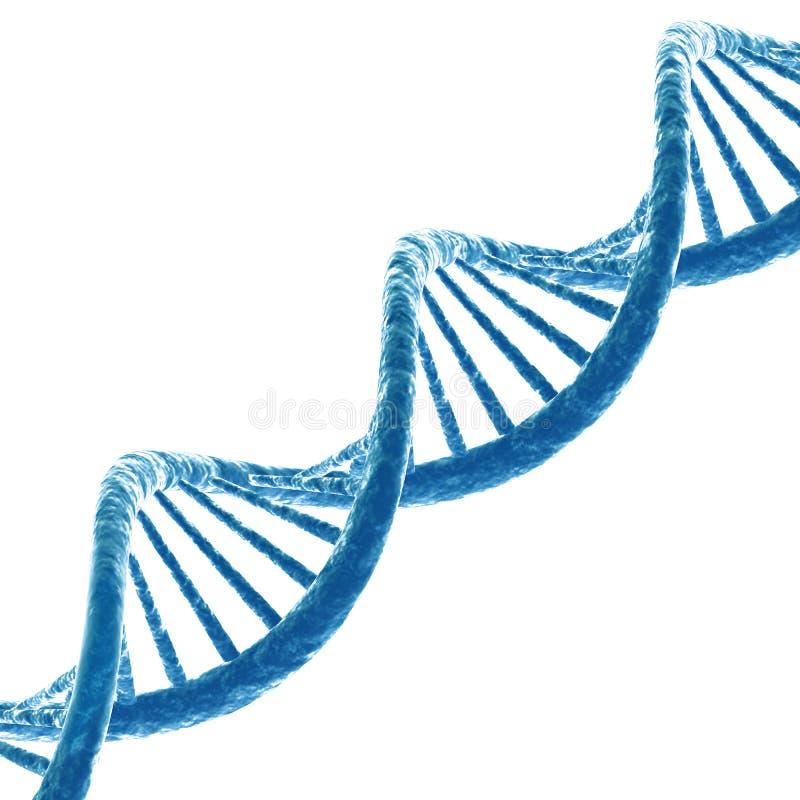 Molécule d'ADN illustration libre de droits