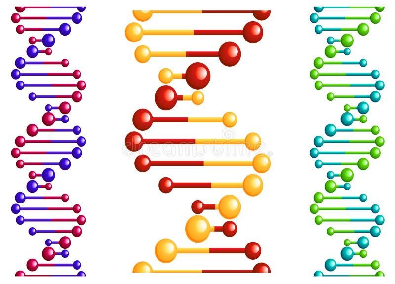 Molécule d'ADN avec des éléments illustration de vecteur