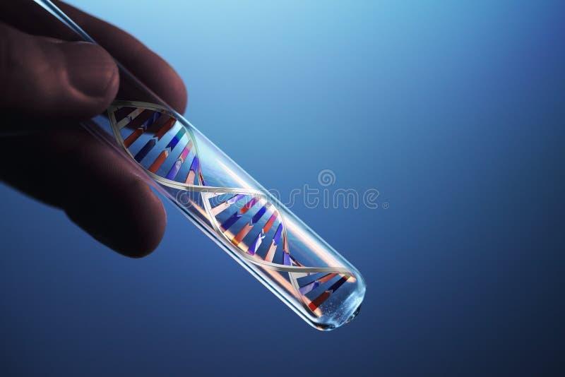 Molécule d'ADN dans le tube à essai photographie stock