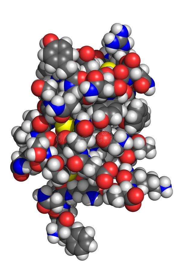 Molécule d'insuline illustration stock