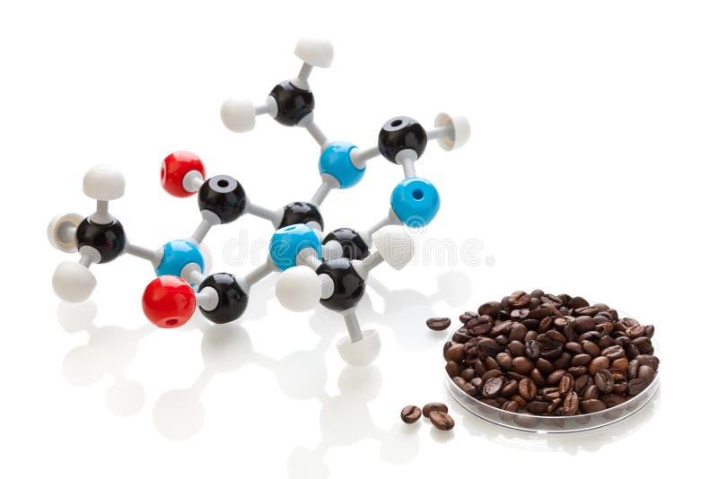 Molécule de caféine avec des grains de café photographie stock libre de droits
