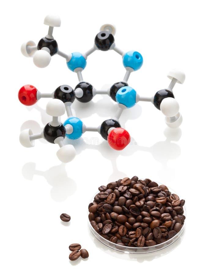 Molécule de caféine avec des grains de café photo libre de droits