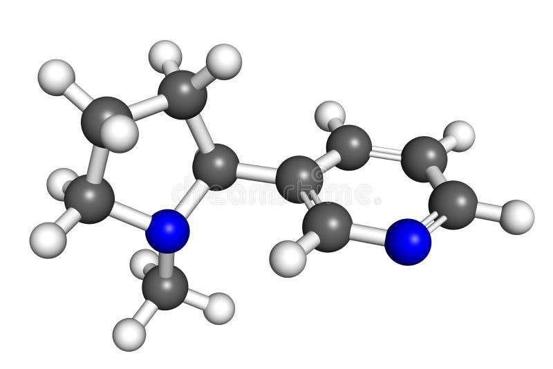 Molécule de nicotine illustration libre de droits