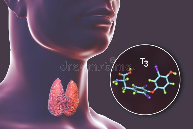 Molécule de T3 d'hormone thyroïdienne illustration libre de droits