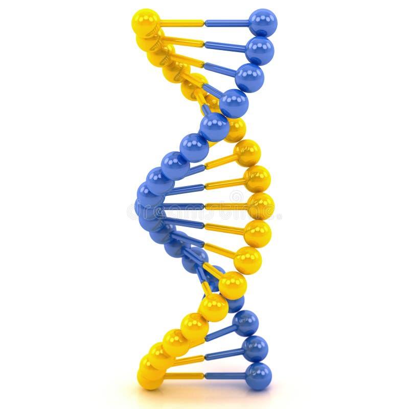 Molécule jaune d'ADN de bleu illustration libre de droits