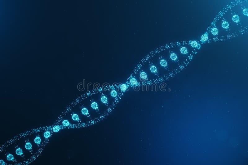 Mol?cula de la DNA de Digitaces, estructura Genoma humano del c?digo digital del concepto Mol?cula de la DNA con los genes modifi libre illustration