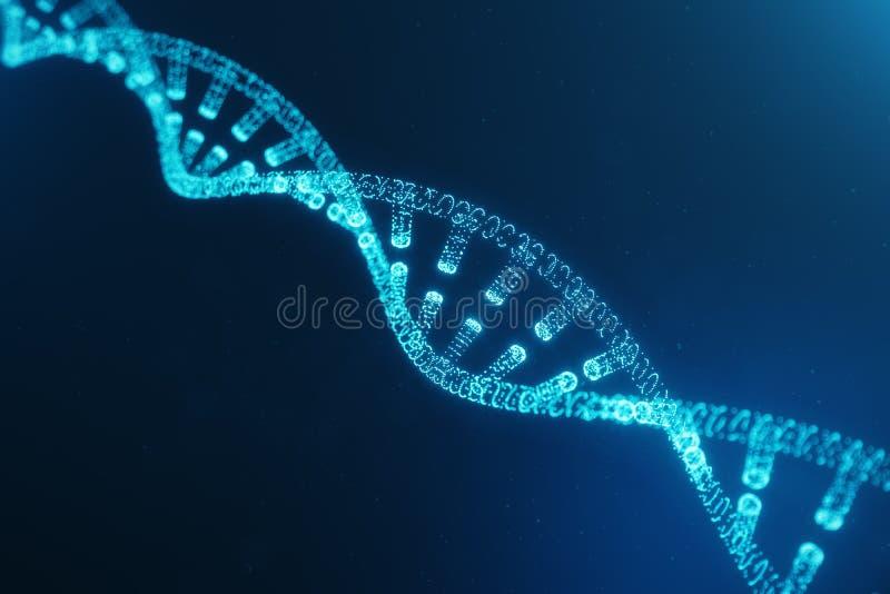 Mol?cula de la DNA de Digitaces, estructura Genoma humano del c?digo digital del concepto Mol?cula de la DNA con los genes modifi stock de ilustración