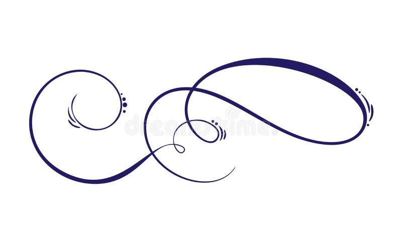 A mola caligráfica tirada mão do vetor floresce elementos do projeto Decoração clara floral do estilo para a Web, o casamento e a ilustração royalty free