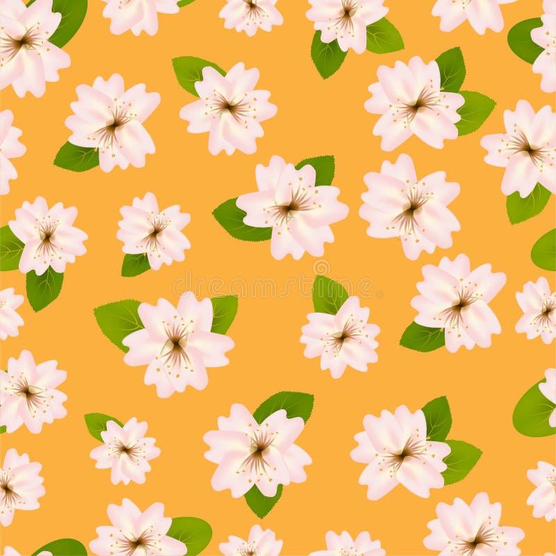 Mola Cherry Blossoms Teste padr?o?sem emenda de ? com Japanese?sakura Flores cor-de-rosa no fundo alaranjado Ilustra??o?de Romant ilustração do vetor