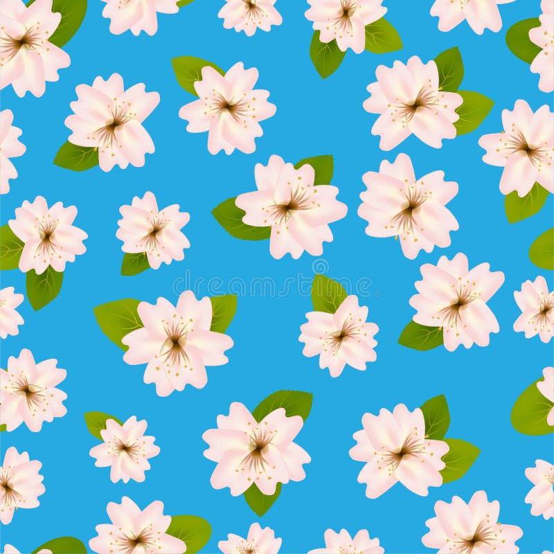 Mola Cherry Blossoms Teste padr?o?sem emenda de ? com Japanese?sakura Flores cor-de-rosa no fundo azul Ilustra??o?do vetor de Rom ilustração royalty free