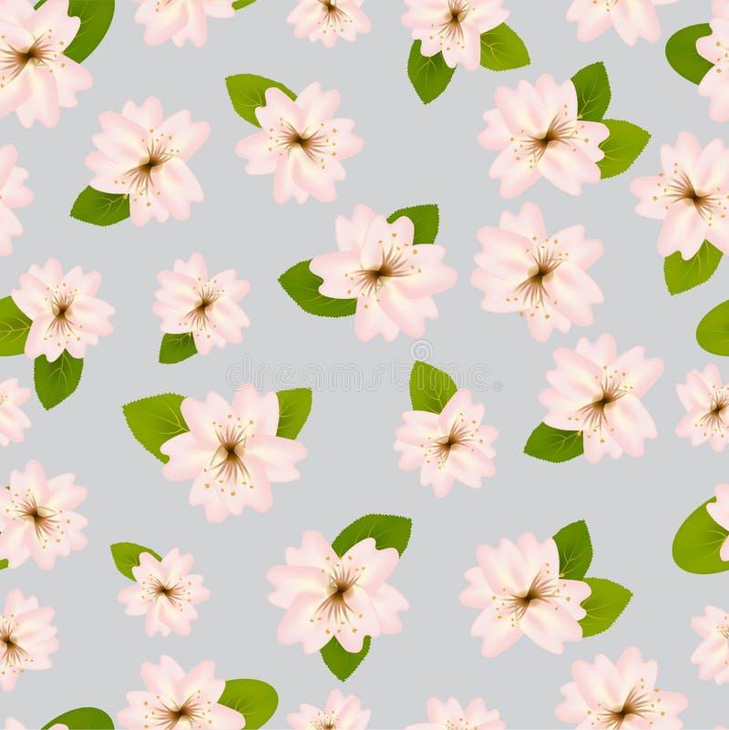 Mola Cherry Blossoms Teste padr?o?sem emenda de ? com Japanese?sakura Flores cor-de-rosa no fundo cinzento Ilustra??o rom?ntica ilustração do vetor