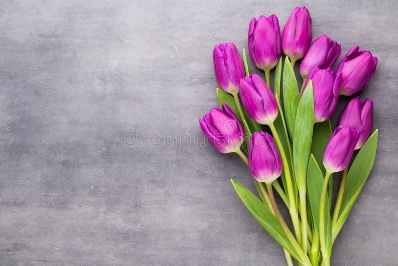 A mola colorido floresce, tulipa em um fundo cinzento fotos de stock royalty free