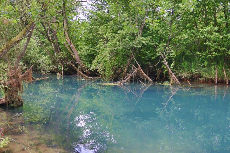 A mola da montanha surpreendentemente bonita com cor de água azul celestial e a cachoeira pequena nomeou Krupajsko Vrelo foto de stock royalty free