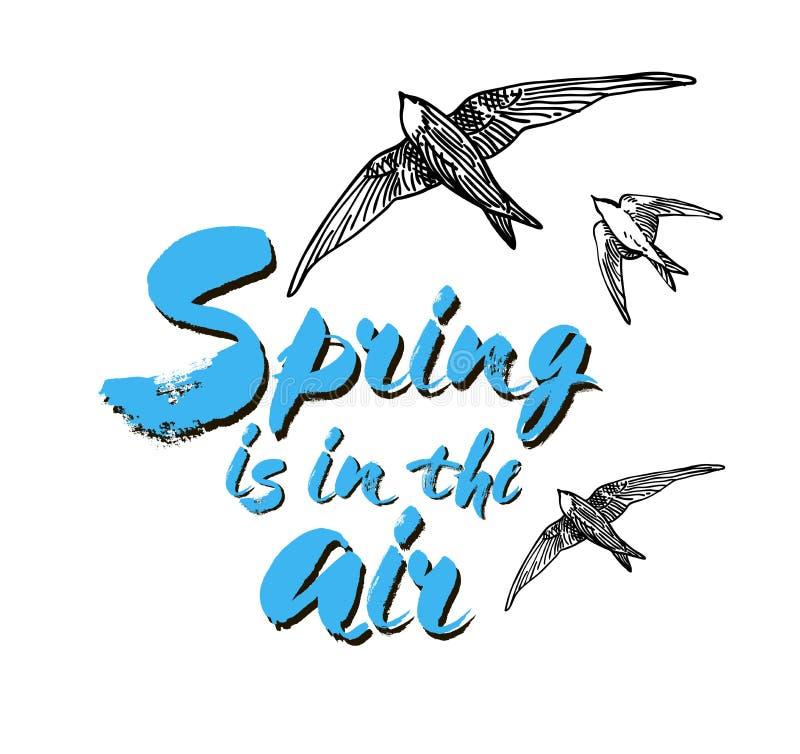 A mola está no cartão do ar Ilustração da tinta Caligrafia moderna da escova Isolado no fundo branco com pássaros ilustração do vetor