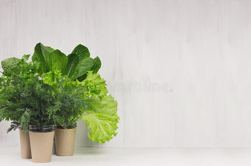 A mola esverdeia para a salada em uns potenciômetros no interior branco da cozinha Alimento saudável do vegetariano imagens de stock royalty free