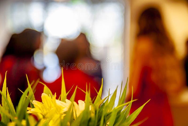 A mola floresce com o convidado no fundo imagem de stock