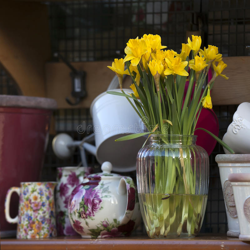 A mola floresce no vaso no fundo interior home foto de stock