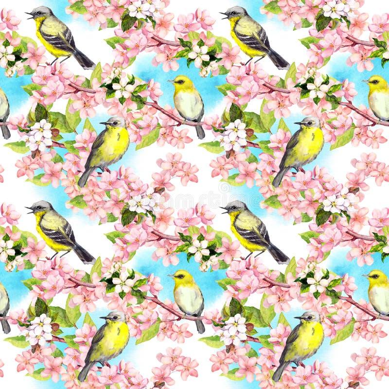 A mola floresce, pássaros da música com céu azul Fundo de repetição floral watercolor ilustração do vetor