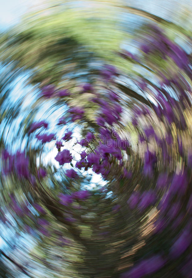 Mola Forest Abstract Swirl, foco seletivo ilustração stock