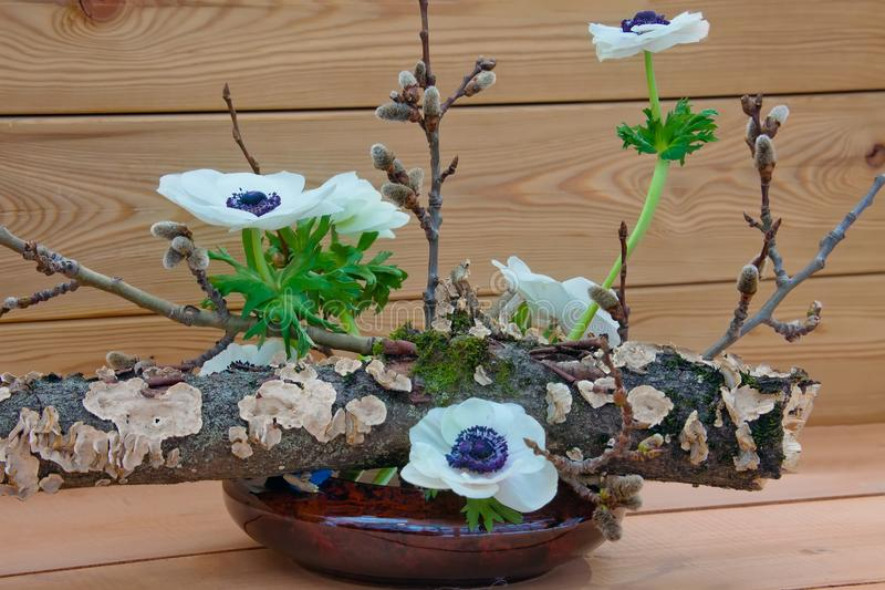 Mola Ikebana, arranjo floral japonês foto de stock royalty free